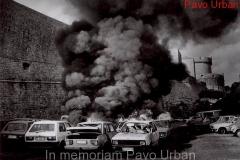 In memoriam Pavo